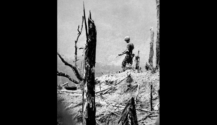 Lone Soldier on Devestated Vietnam Hill
