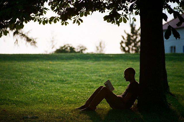What's at the top of your summer reading list?