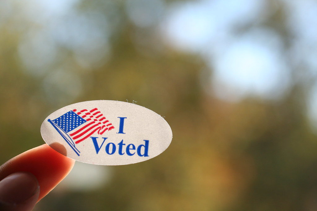 Are you voting in the Virginia elections?