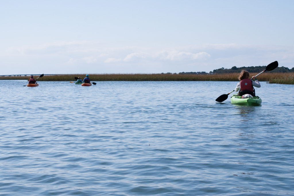 A group kayaks at the Eastern Shore of Virginia National Wildlife Refuge.